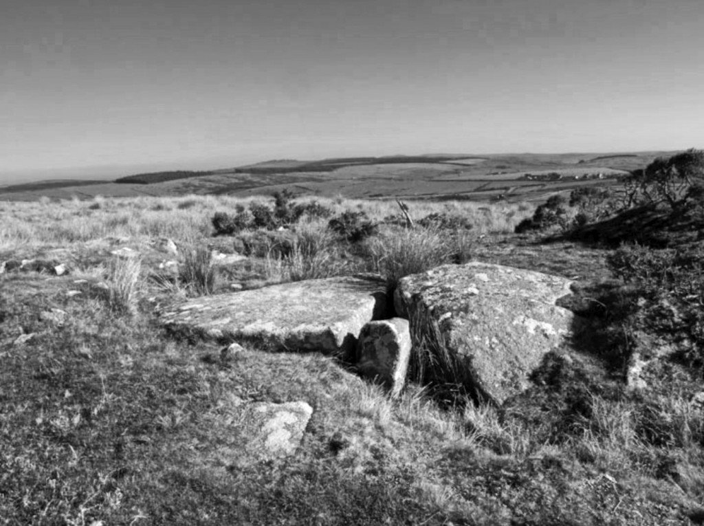 TOLBOROUGHTOR_BW
