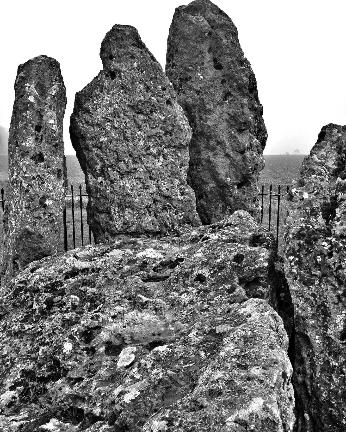 portal dolmen. whispering knights. believed to be the earliest of the rollright stones, they are the remains of the burial chamber of an early or middle neolithic portal dolmen, lying 400 metres east of the king's men circle. four standing stones survive, forming a chamber about two square metres in area around a fifth recumbent stone, probably the collapsed roof capstone. excavations in the 1980's revealed that the portal dolmen had never been a part of a longer cairn, as had been suggested by some earlier investigators. neolithic pottery found at the time as part of the excavations has suggested the early date.#neolithic #wisperingknights #portaldolmen #rollrightstones #archaeology #burialchamber  #monoliths #capstone